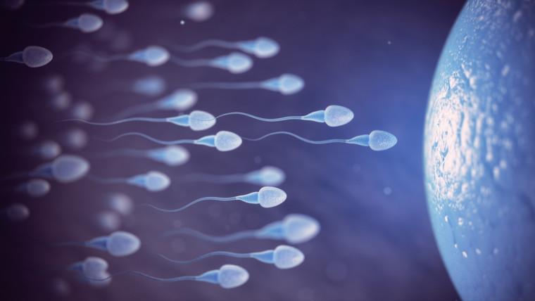 Гинекология и репродуктивная медицина