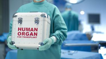 Transplantology