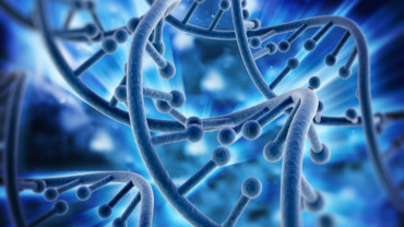 Genetic programms