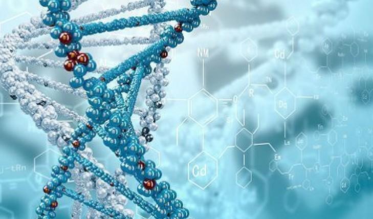 Испанские ученые нашли способ остановить рак мозга